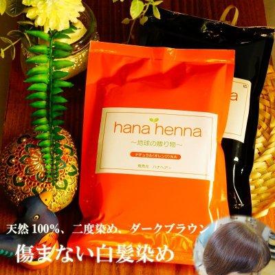 画像1: ハナヘナナチュラル&インディゴ(100g)二度染めセット